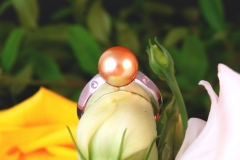 Bague Perle Gold et diamants, or blanc 18K
