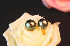 Boucles d'oreilles Perles de Tahiti, or jaune 18K