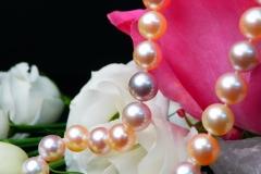 Collier de Perles, fermoir or 18K